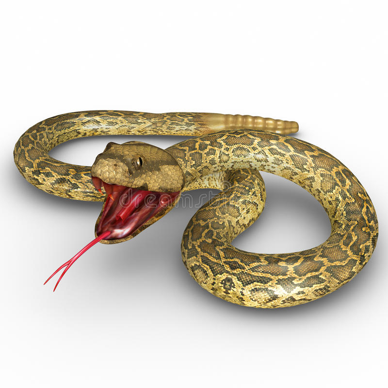 Rattlesnake stock illustration