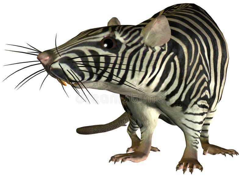 Ratto surreale della zebra illustrazione di stock