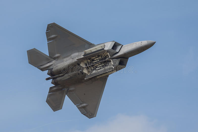 Raubvogel Martin-F-22 lizenzfreie stockfotos
