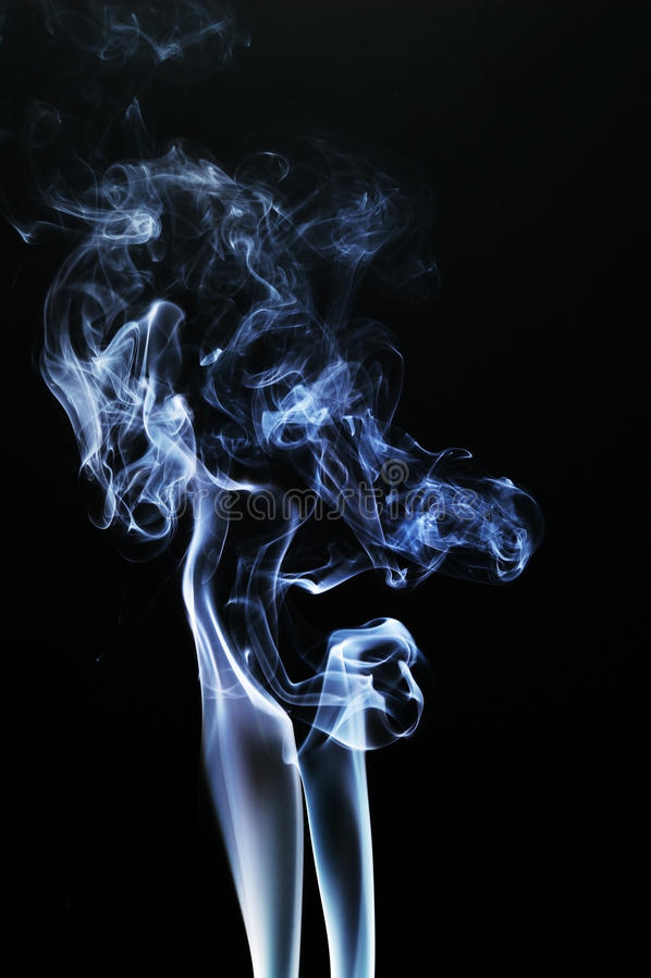 Rauch