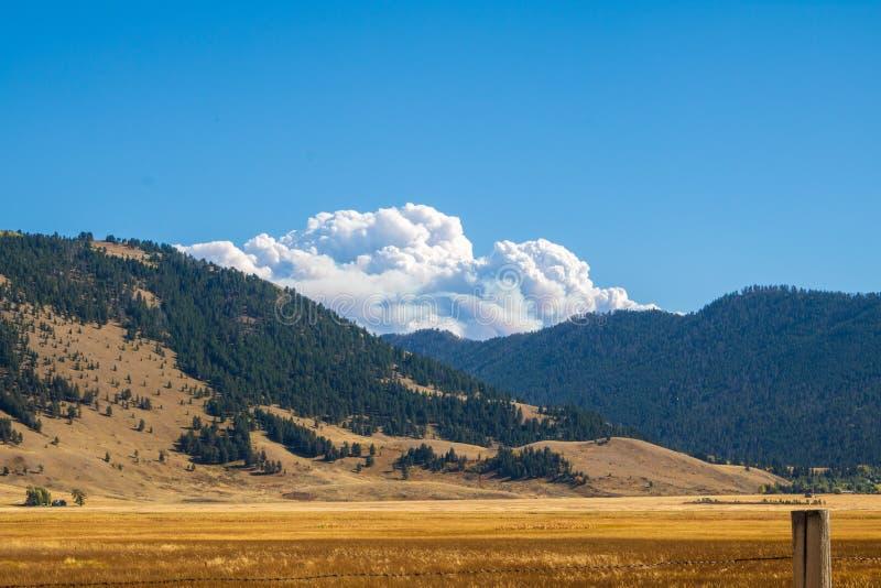 Rauchen Sie von einem Waldbrand, der über die Berge steigt lizenzfreie stockfotografie