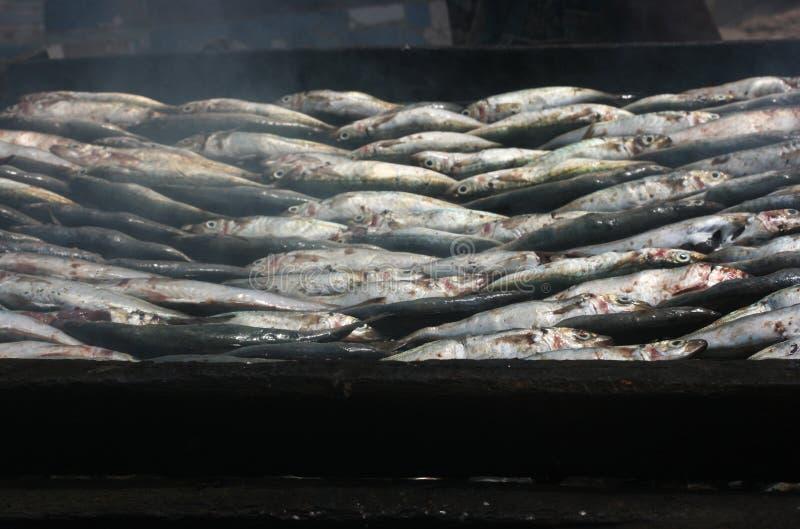 Rauchende Fische stockfoto