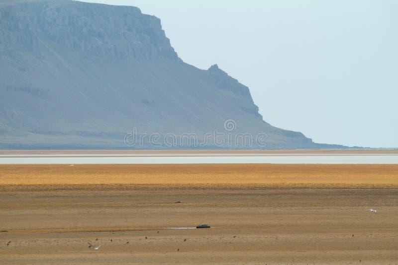 Raudisandur dans Westfjords de l'Islande photos libres de droits