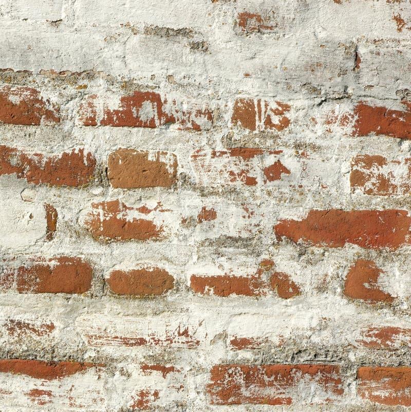Raue Wand des roten Backsteins mit weißem Gips-Rahmen-Hintergrund stockfotos