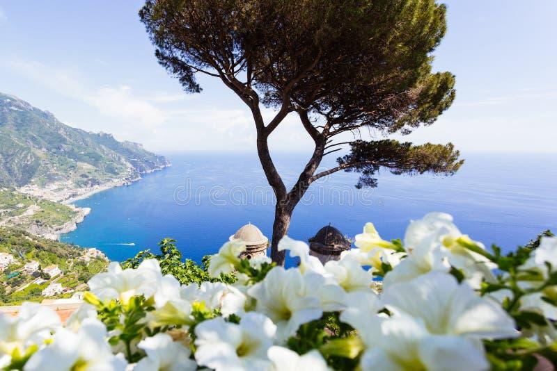 Ravello, терраса над морем, цветки стоковые изображения rf