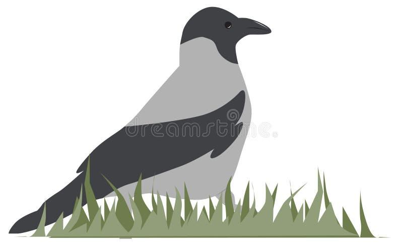 Download Raven stock vector. Image of cartoon, bird, clip, raven - 23805014