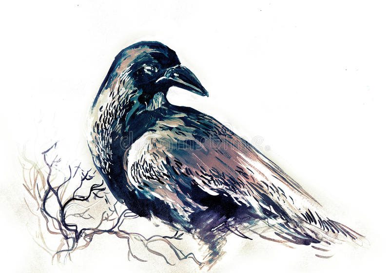 raven stock illustratie