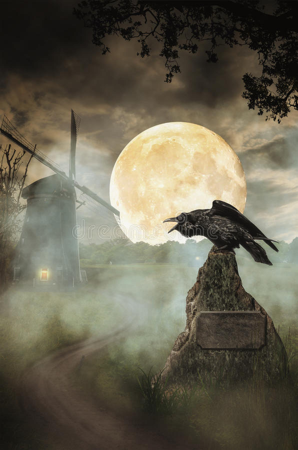 Raven el camino libre illustration