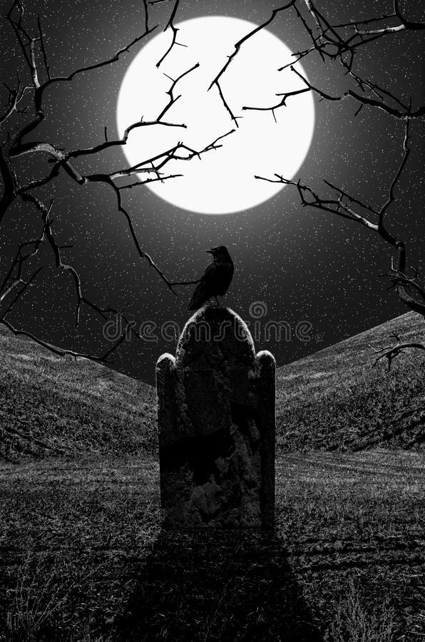 Download Raven On Gravestone At Midnight Stock Photo