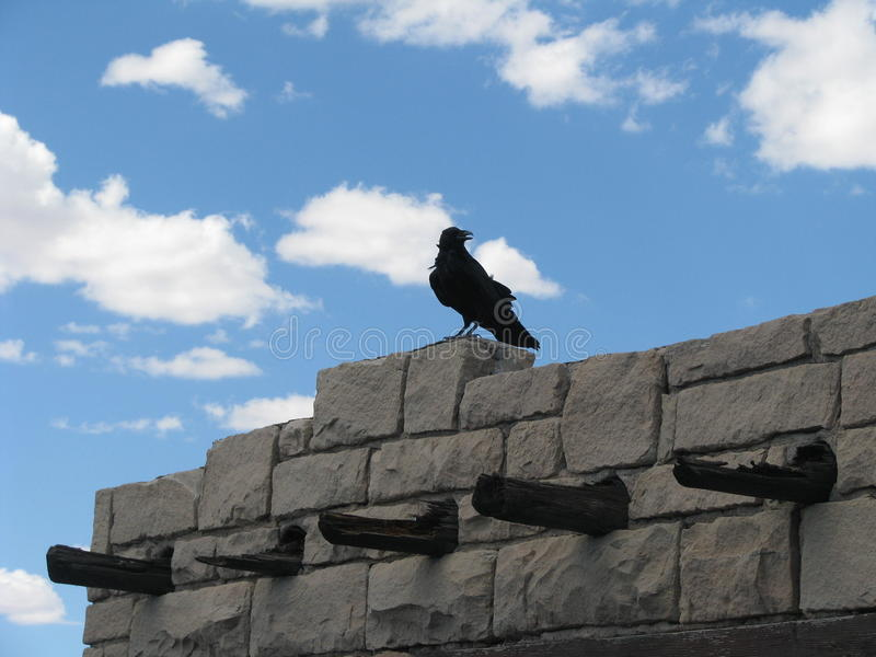 Raven perched on stone building stock images