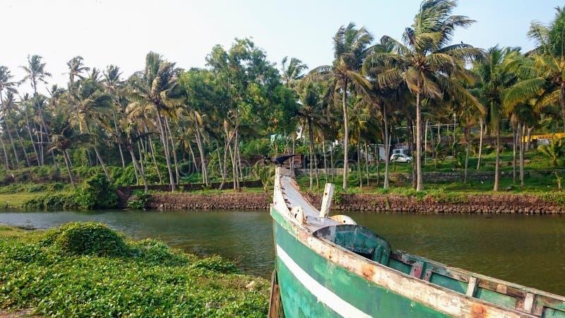 Raven sur l'arc du bateau, les voies d'eau dans la jungle Kerala, Inde images stock