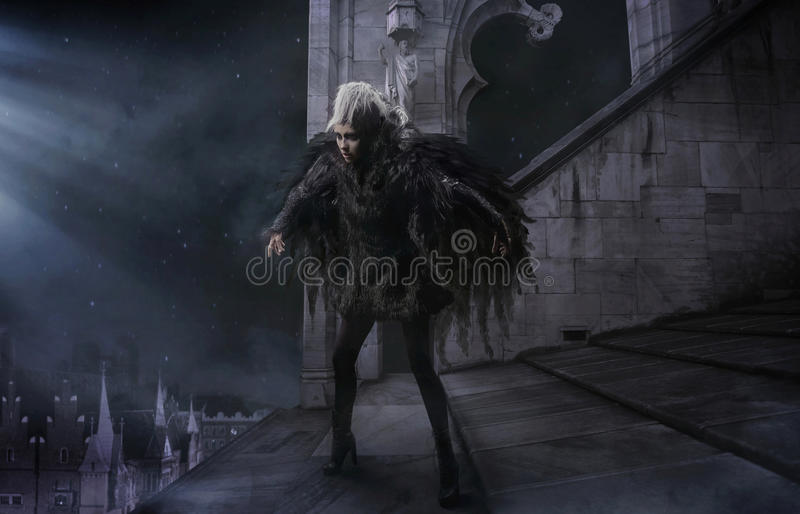 Download Raven-woman stock photo. Image of person, night, fetish - 22822884