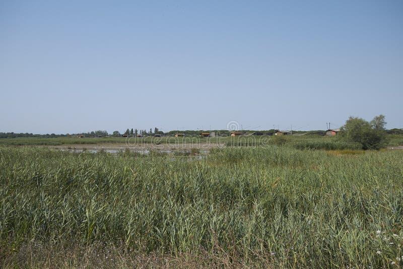 View of Delta del Po stock photo