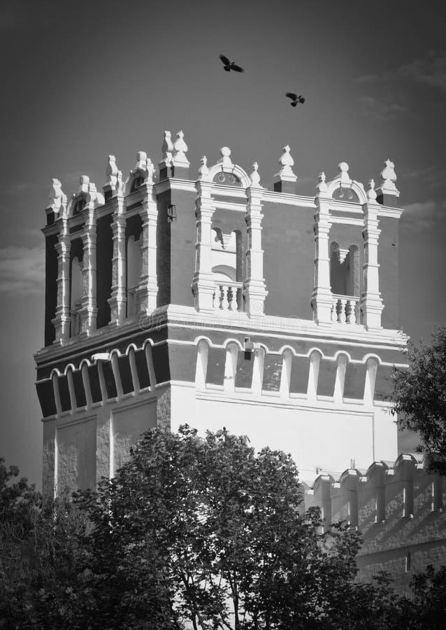 Ravens au-dessus de la tour le jour d'été noir et blanc photographie stock libre de droits