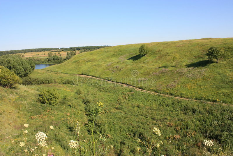 Download Ravine in Ryazan stock image. Image of flowers, river - 5691623