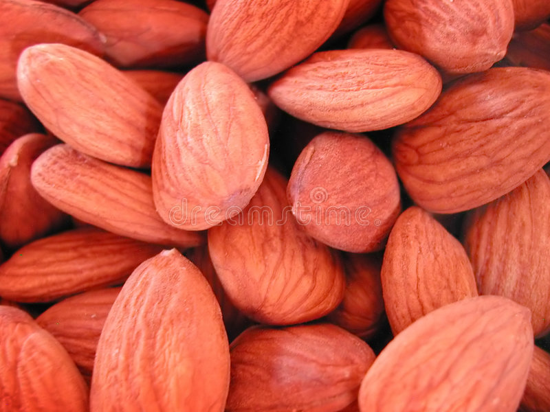 Download Raw Almonds stock photo. Image of almond, almonds, treats - 14772
