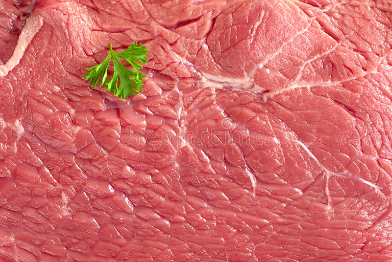 Download Raw Beef Meat stock image. Image of surface, herb, leaf - 19683065