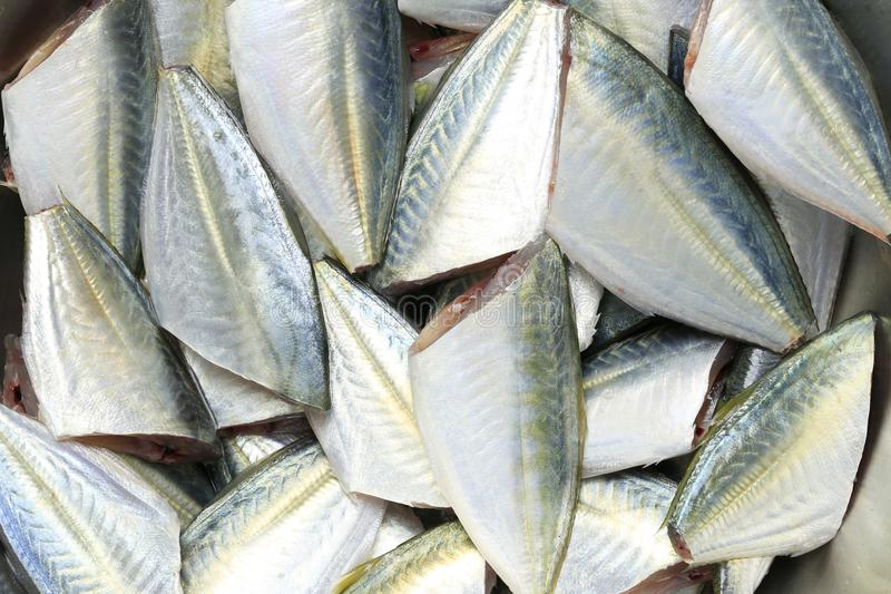 Raw Bigeye trevally or Dusky jack fish of ingredients for cooking. royalty free stock images