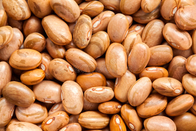 Raw brown beans stock images