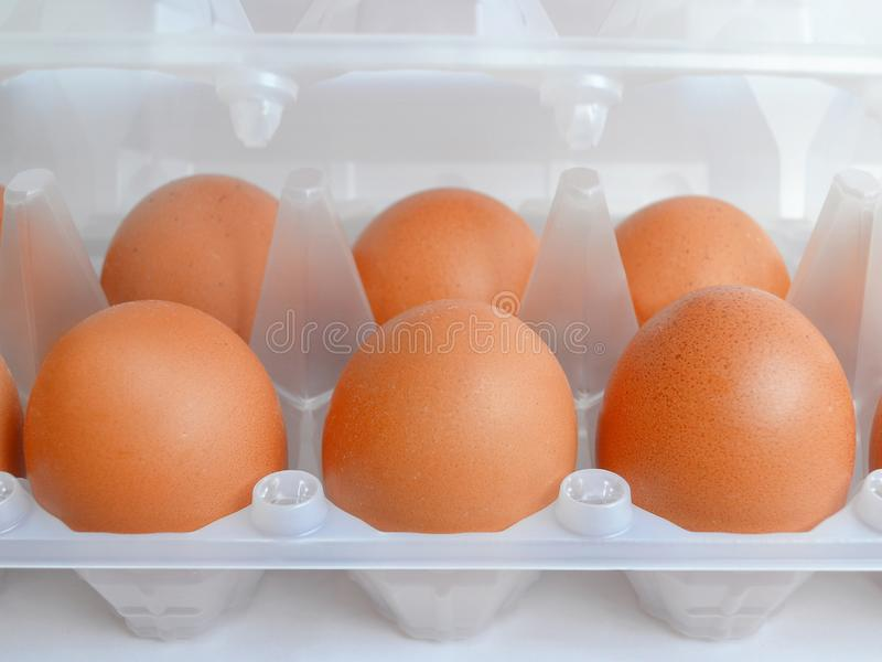 Raw brown chicken eggs in white semitransparent plastic packaging, neutral background. Close up royalty free stock images