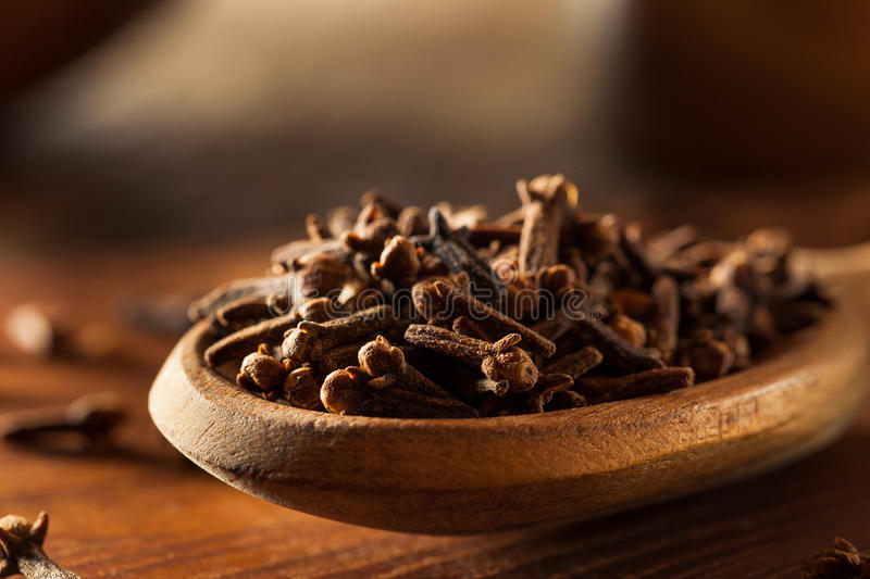 Raw Brown Organic Cloves stock image