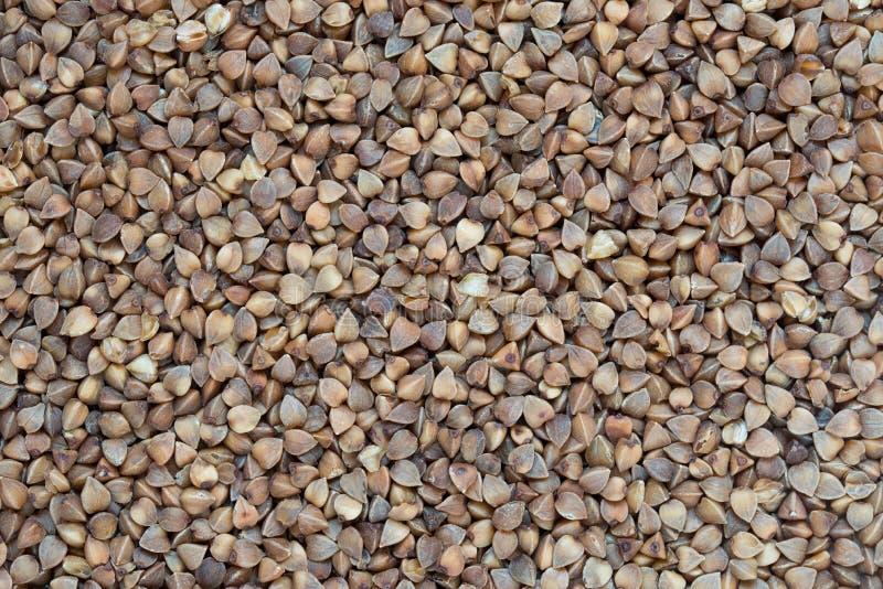 Raw buckweat groats healhty food background stock photo
