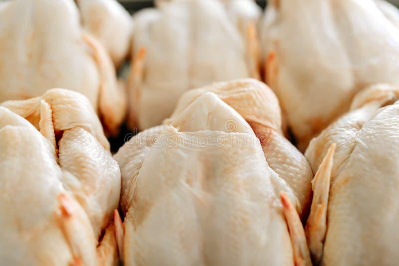 Raw butchered chicken. Raw fresh butchered chicken meat stock photos