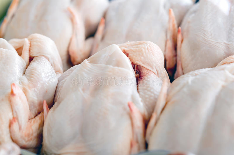 Raw butchered chicken. In queue royalty free stock photography