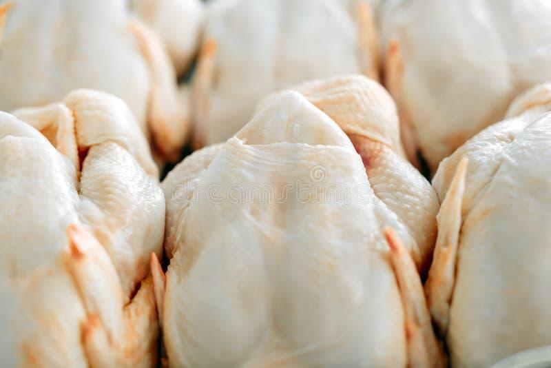 Raw butchered chicken. In queue stock photos