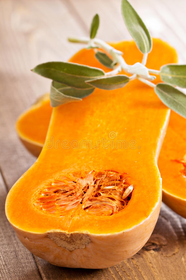Raw butternut squash halved with sage royalty free stock images