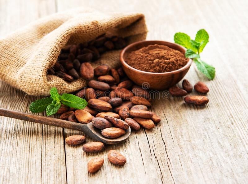 Raw cacao beans and cocoa powder. Raw cacao beans in burlap bag and bowl with cacao powder  on a wooden table stock photos