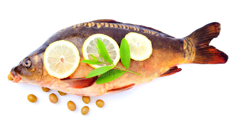 Download Raw carp mirror whole stock photo. Image of isolated - 22328380