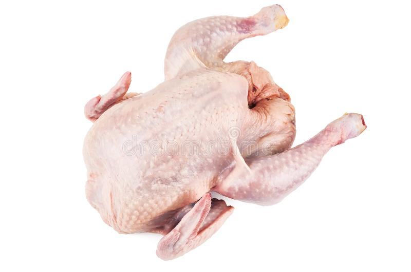 Raw chicken corp on white. Raw chicken corp isolated on white stock images