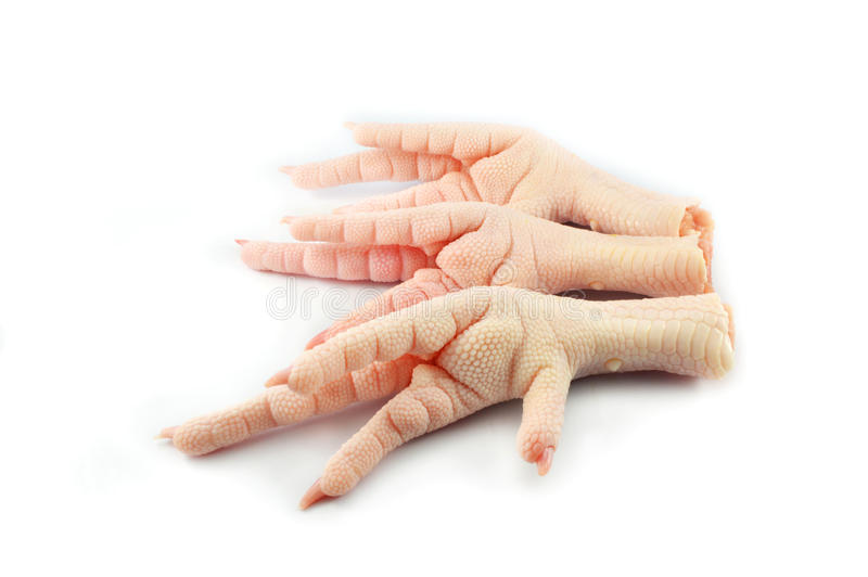 Raw chicken foot royalty free stock image