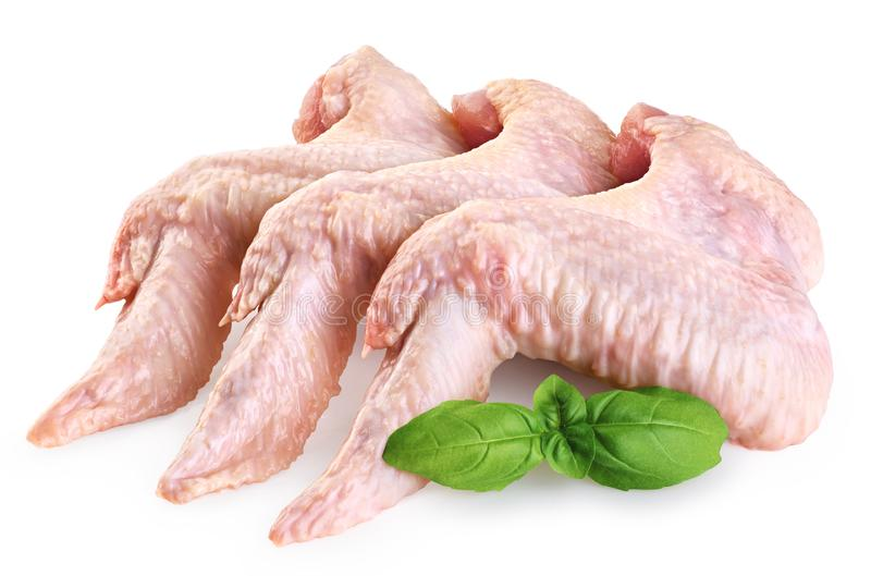 Raw chicken wings and basil royalty free stock images