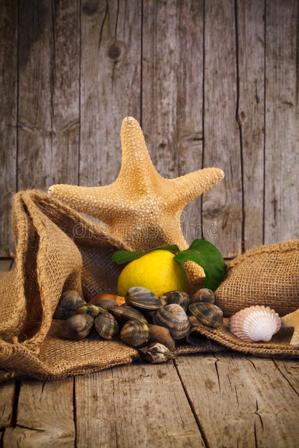Download Raw Clams Royalty Free Stock Image - Image: 37685686