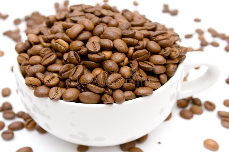 Raw Coffee royalty free stock image