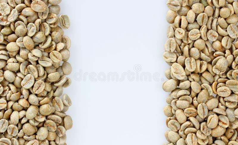 Raw Coffee Beans Stock Image