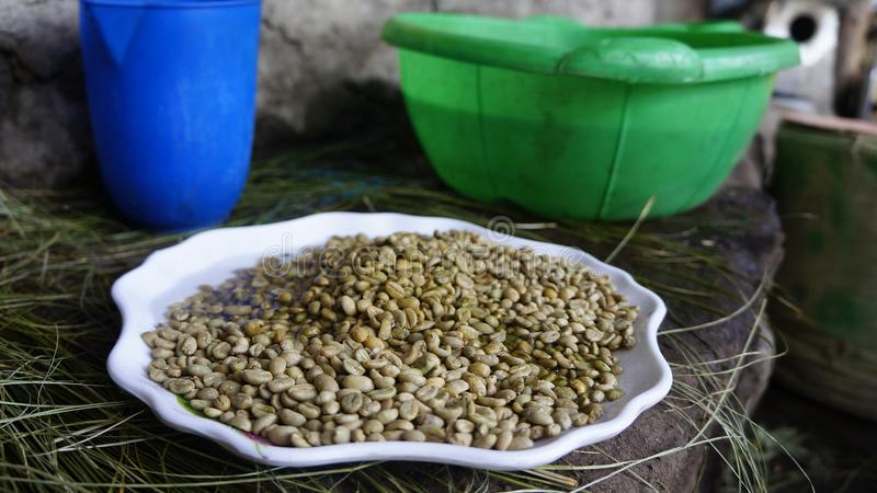 Raw Coffee Beans in Ethiopia stock images
