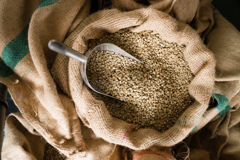 Raw Coffee Beans Seeds Bulk Burlap Sack Production Warehouse stock image