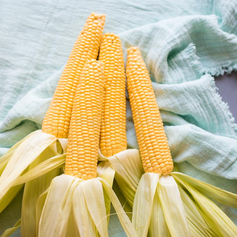 Raw corn prepared for baking. Whole raw corn prepared for baking, food styling with pastel colors stock image