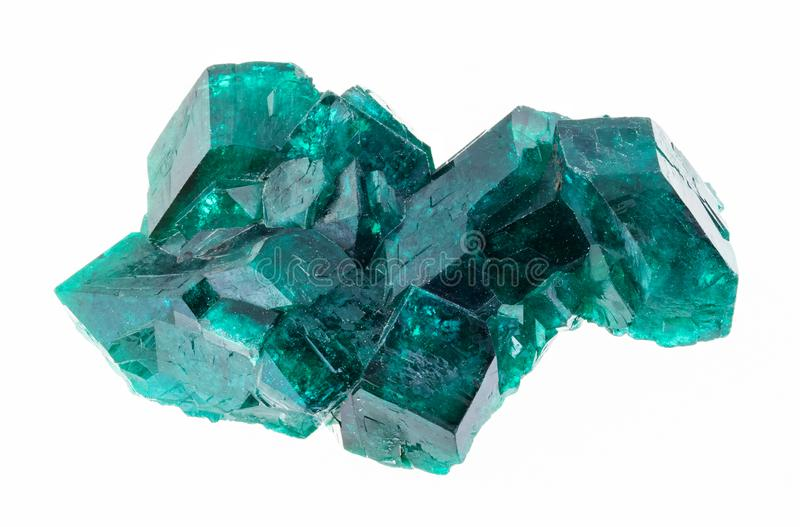raw Dioptase (copper emerald) crystals on white royalty free stock photo