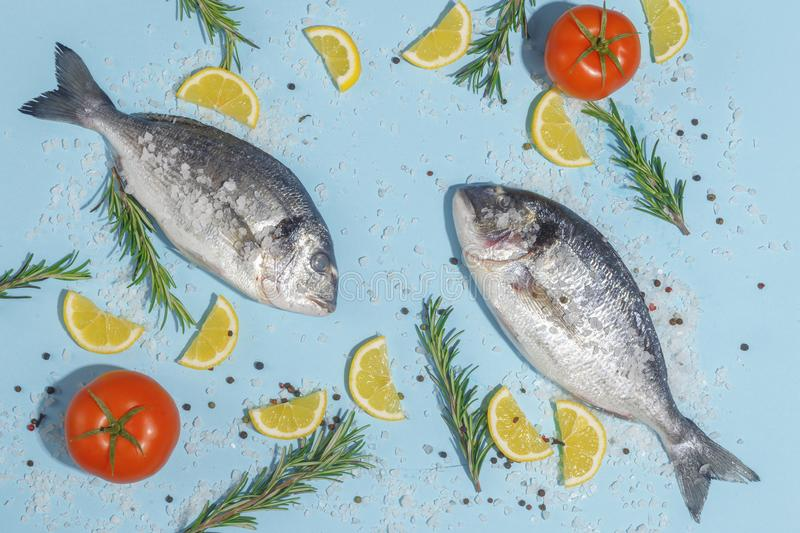Raw dorada fish with spices, salt, lemon and herbs, rosemary on a ligth-blue background. Top view. Seafood healthy freshness pepper eating bream dorado dinner stock images