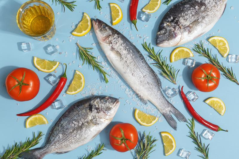 Raw dorada fish with spices, salt, lemon and herbs, rosemary on a ligth-blue background. Top view royalty free stock photo