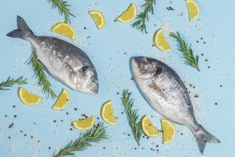 Raw dorada fish with spices, salt, lemon and herbs, rosemary on a ligth-blue background. Top view stock images