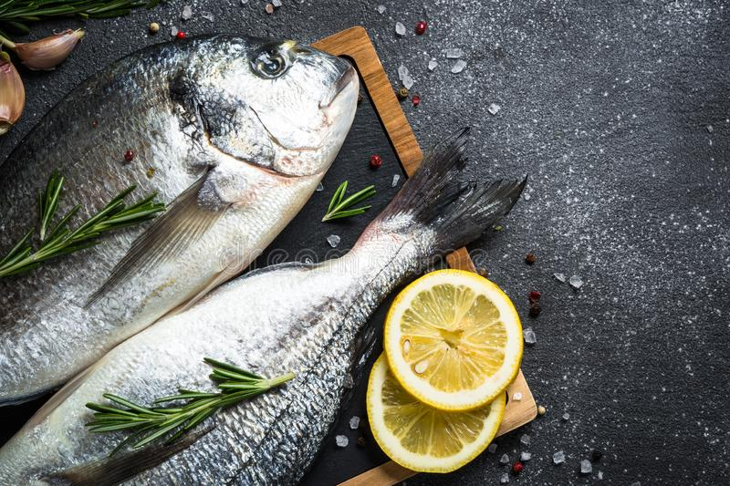 Raw dorado fish on black background. Fresh fish dorado on black stone table with ingredients for cooking. Top view with copy space royalty free stock images
