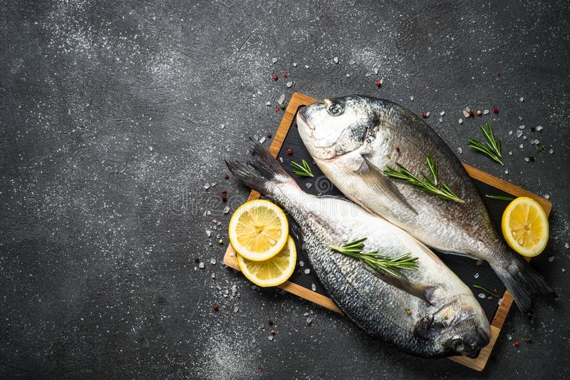 Raw dorado fish on black background. Fresh fish dorado on black stone table with ingredients for cooking. Top view with copy space royalty free stock photo