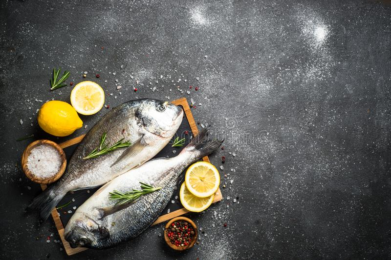 Raw dorado fish on black background. Raw dorado fish on black stone table with ingredients for cooking. Top view with copy space royalty free stock images