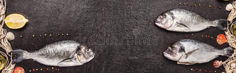 Raw dorado fish with fishing net ,lemon and pepper on black stone background, banner. Raw dorado fish with fishing net ,lemon and pepper on black stone stock photo