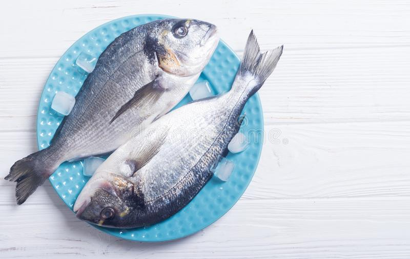 Raw dorado fish in plate with ice. Sea food stock images